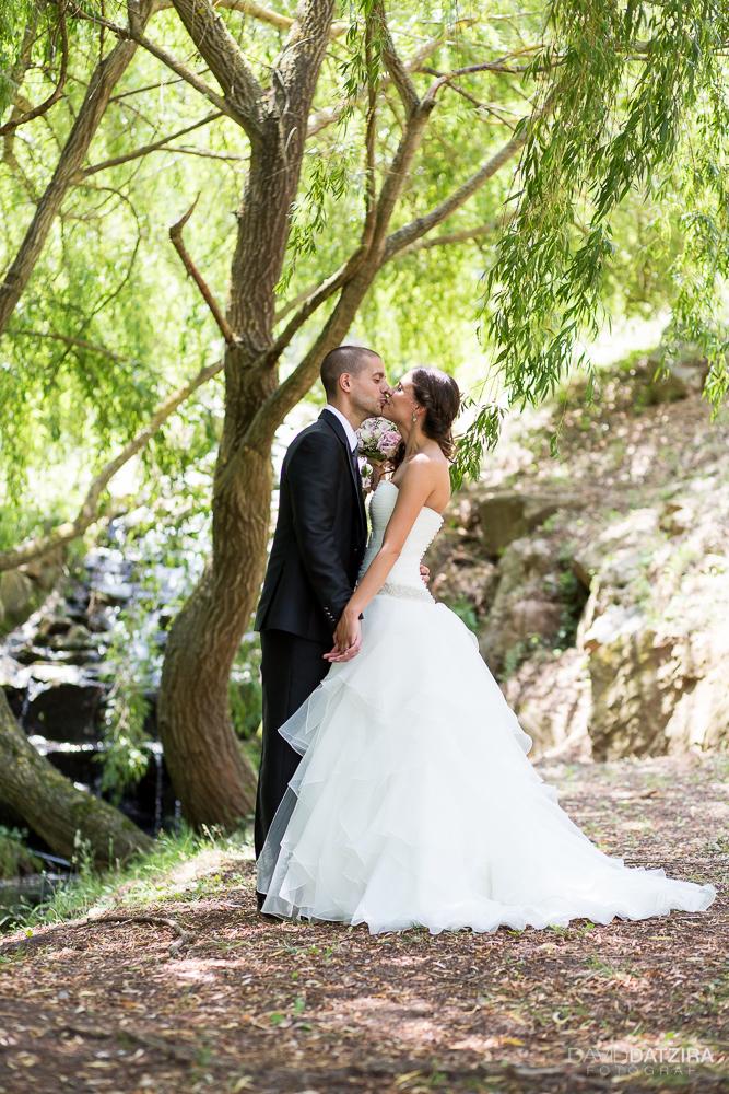 casament-albert-i-anna-47